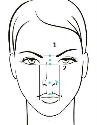 Оценка симметричности носа по основным линиям, проведенным через точки фиксации. Сайт пластического хирурга Г. А. Аганесова