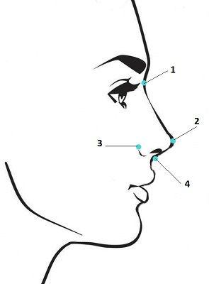 Осмотр носа в боковой проекции, фиксируемые точки, сайт пластического хирурга Аганесова Г. А.