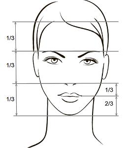 Классически правильные пропорции лица, схема